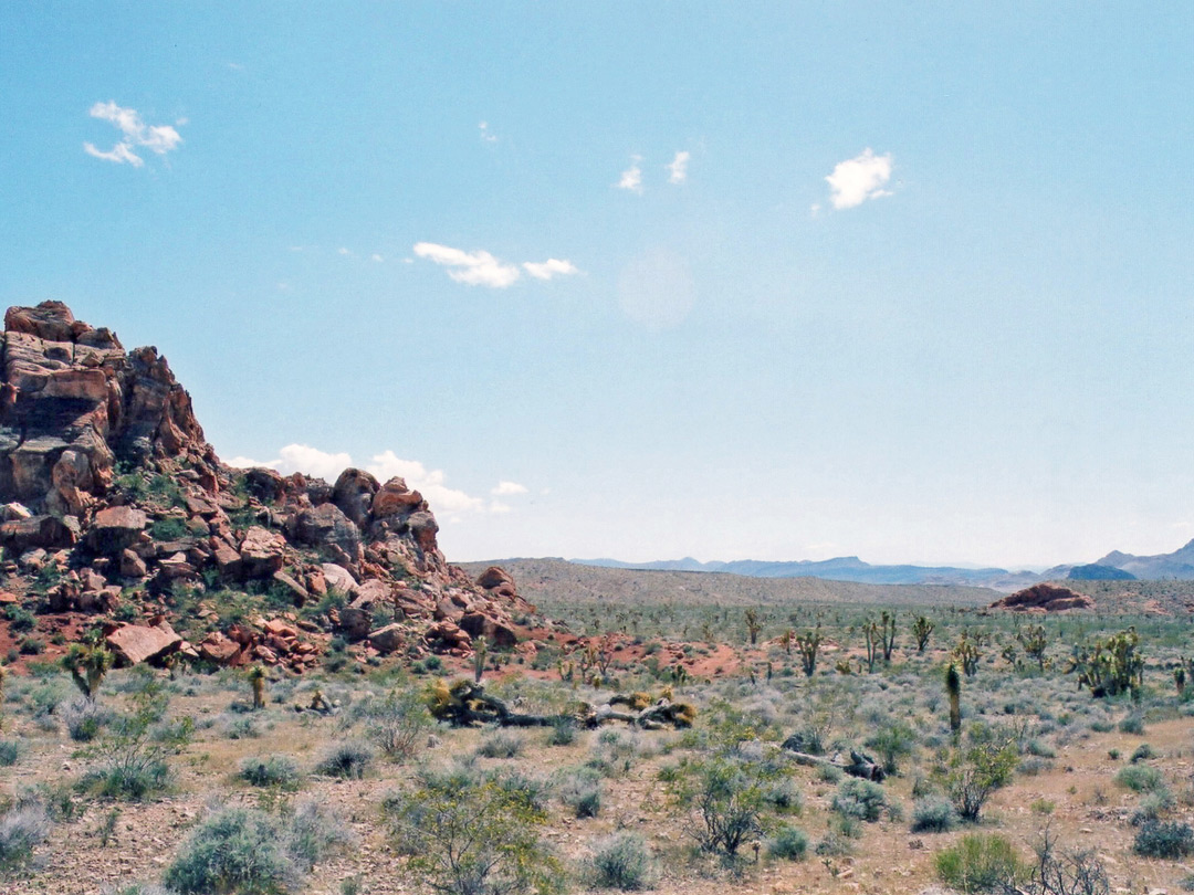 Rocks and desert