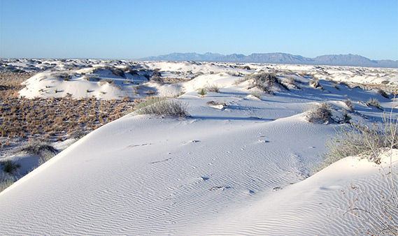 Hotels Near White Sands National Monument New Mexico