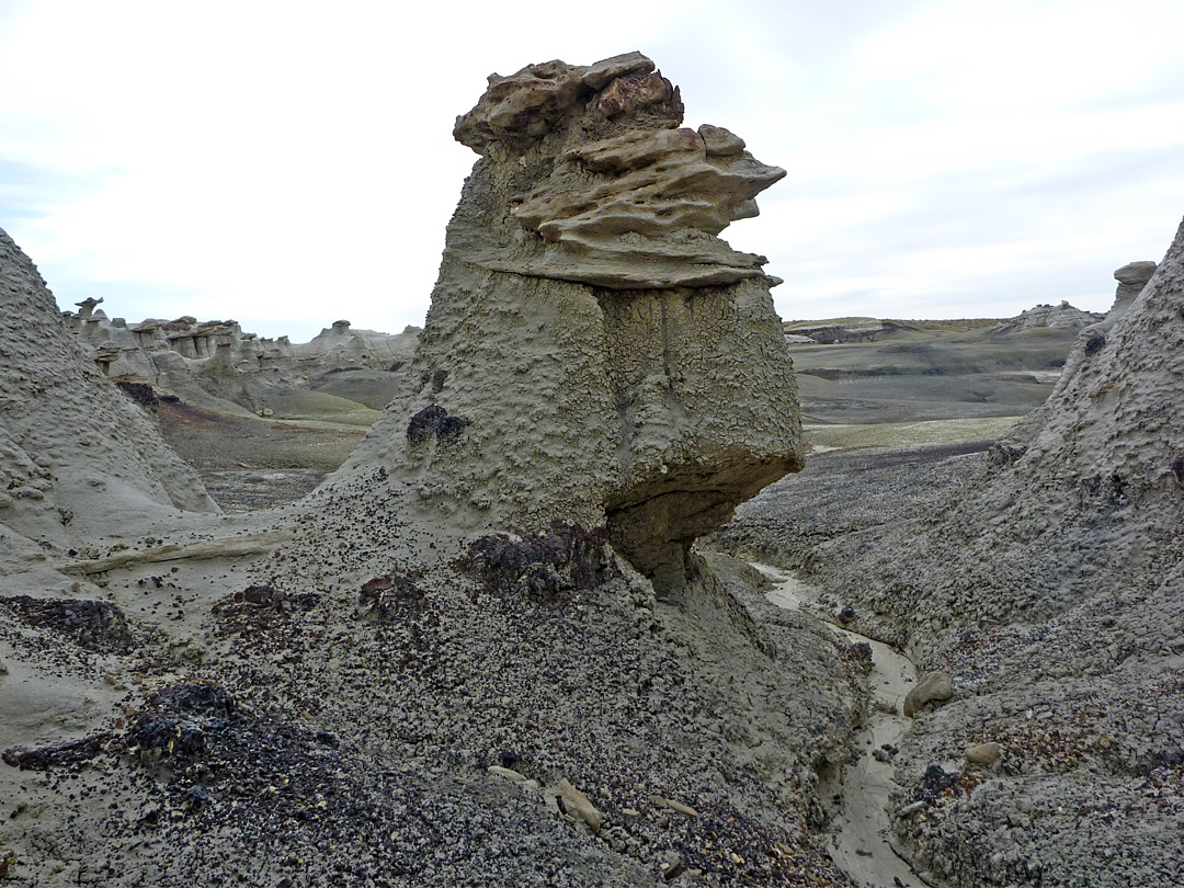 Hoodoo, wash and badlands