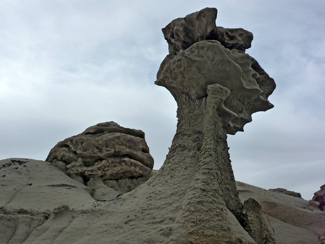 Head-shaped hoodoo
