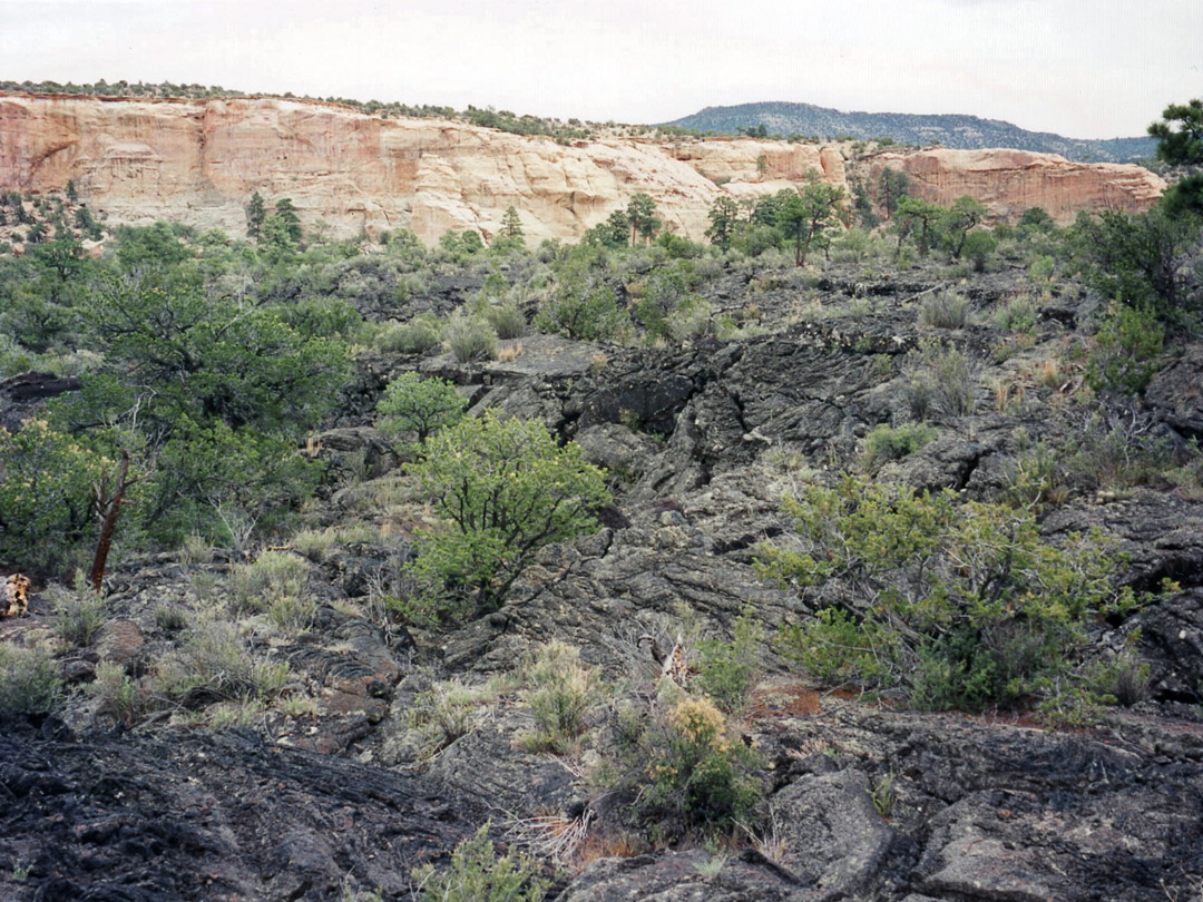 Lava by the Zuni-Acoma Trail
