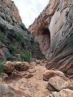 Cottonwood Wash Narrows