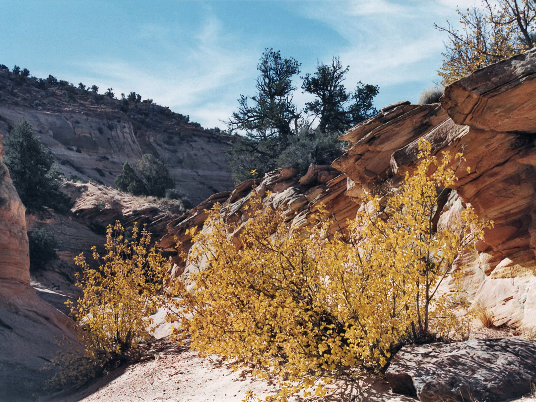 Wyoming slot canyon