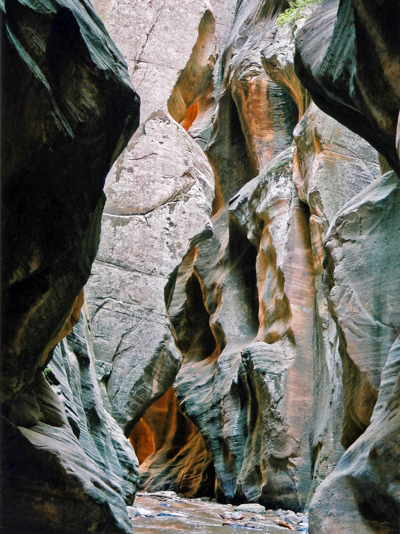 Sculptured canyon walls