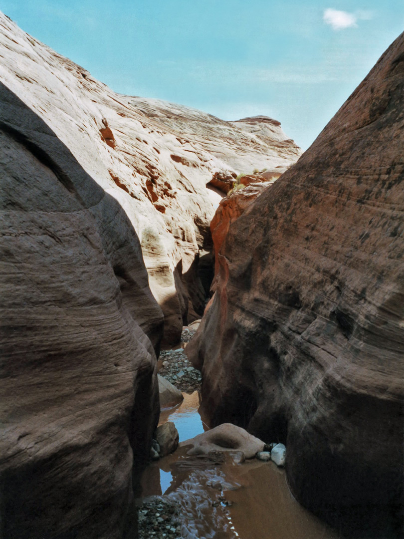 Pool in the middle of the canyon