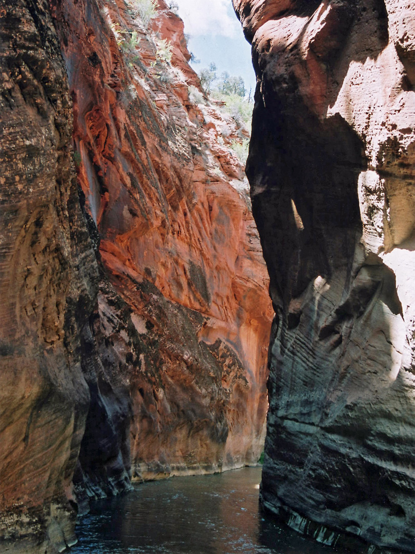 Walls of Parunuweap Canyon