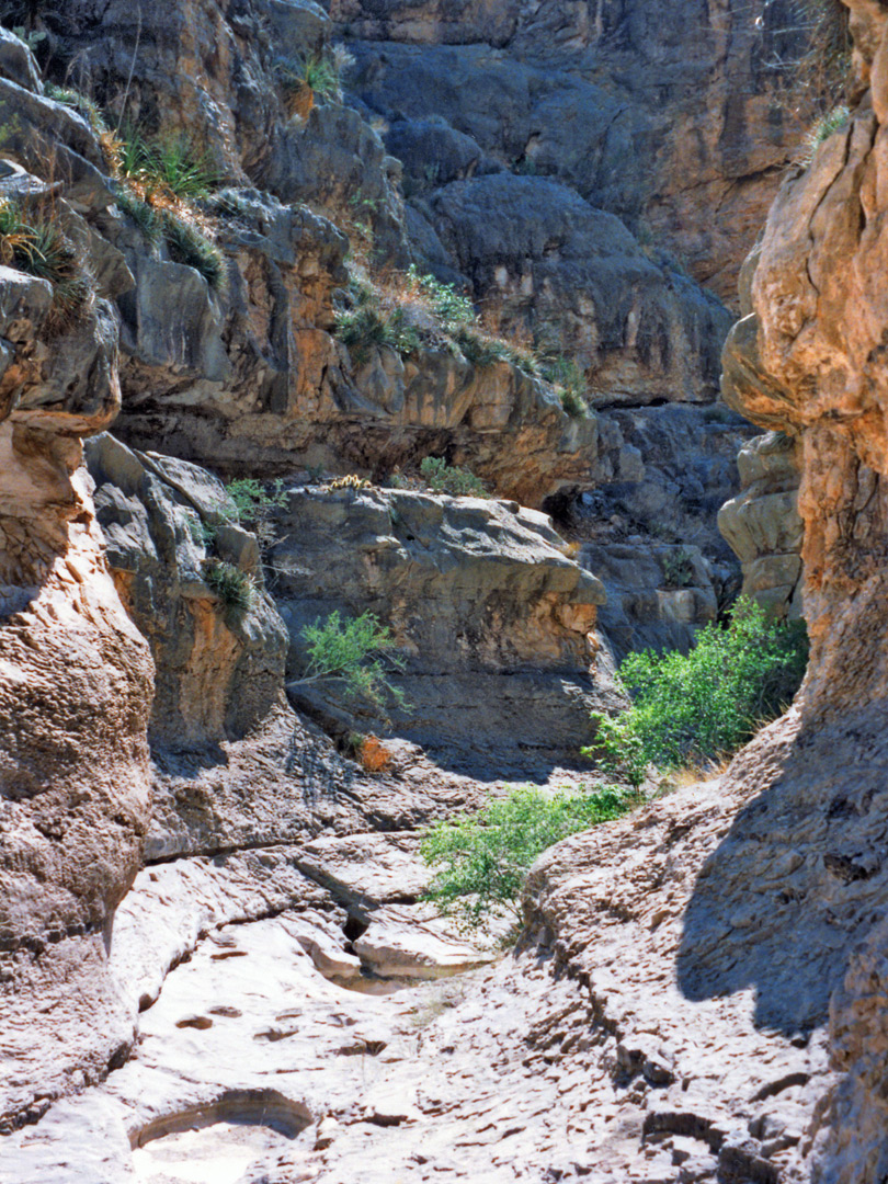 Start of the Boquillas side canyon