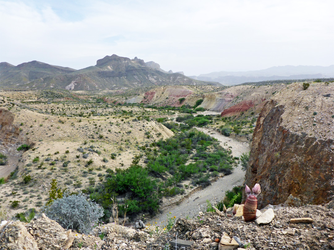 Fort Davis Tx >> Dome Trail, Big Bend Ranch State Park, Texas