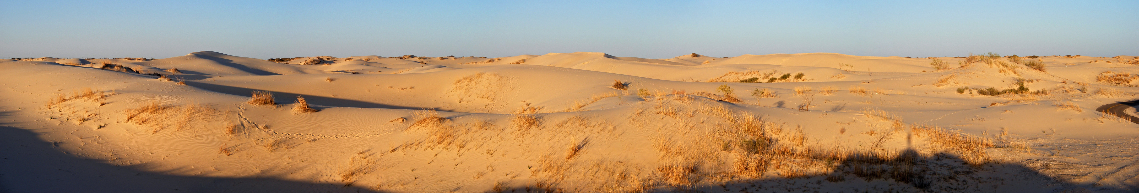 Evening sun on the Monahans Sandhills