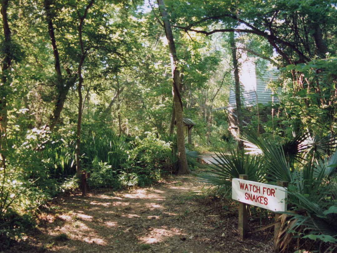 Start of the Palmetto Trail