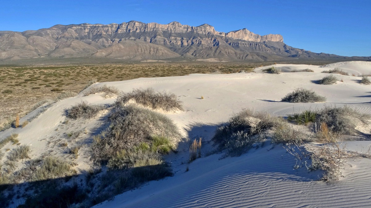 Dunes of Salt Basin