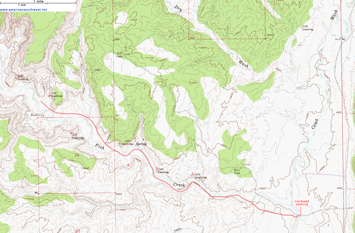 Topographic Map of Lower Fish Creek Cedar Mesa Utah