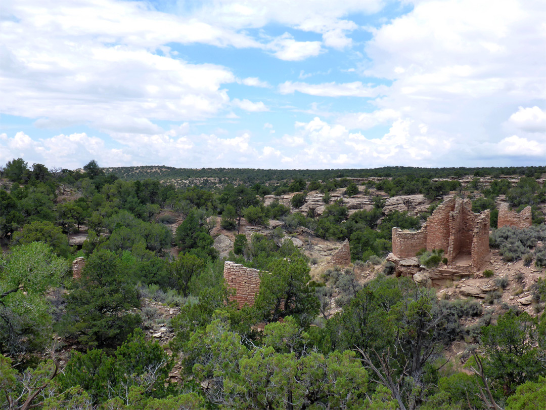 Wide view of the ruins