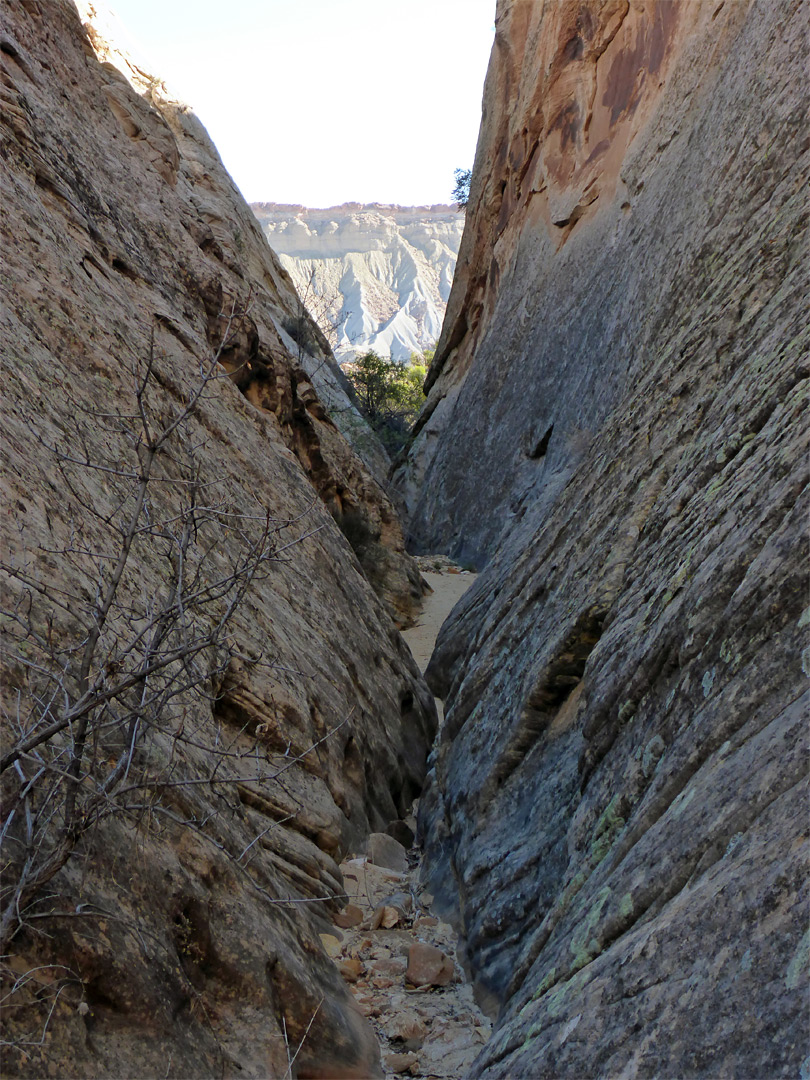 surprise canyon capitol reef national park utah