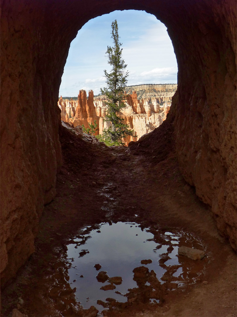 tunnel view  peekaboo trail  bryce canyon national park  utah