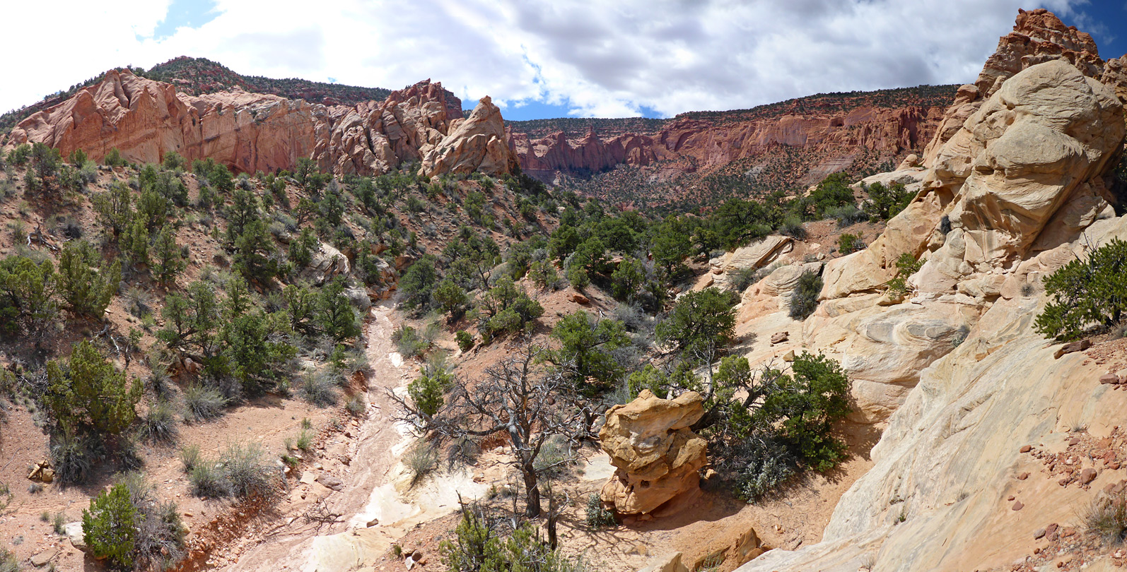 Red Canyon, Capitol Reef National Park, Utah