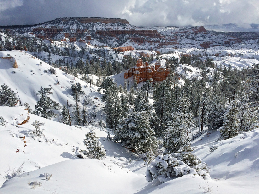 Snow Below Sunrise Point The North Bryce Canyon National