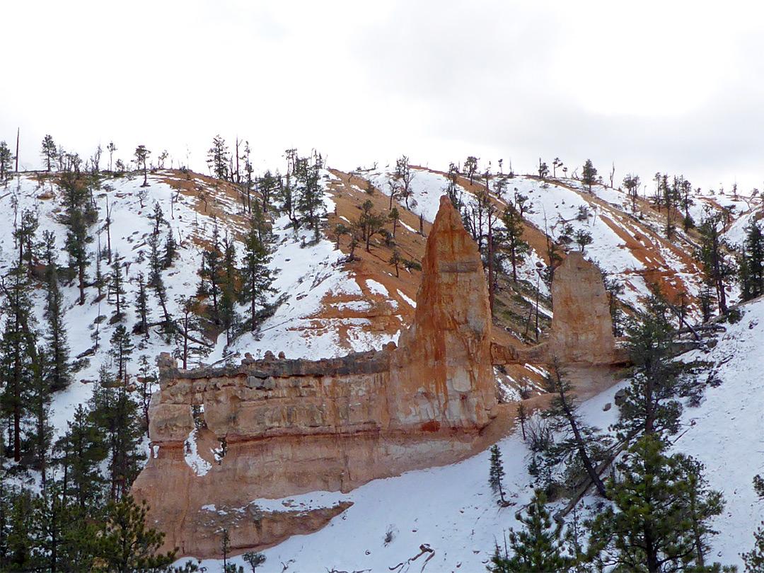 Slopes Above Tower Bridge Fairyland Loop Trail Bryce Canyon National Park Utah
