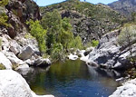 Video of Sabino Canyon