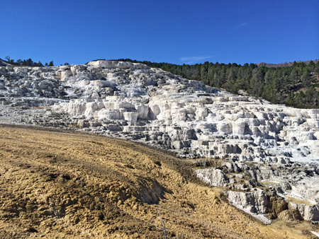 Photographs of the north yellowstone national park for Minerva terrace yellowstone