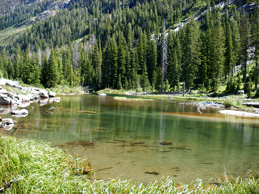 Pool in Cascade Canyon