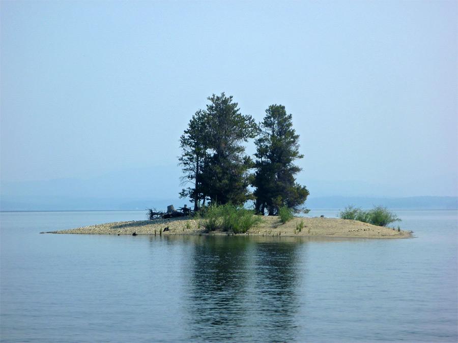 Language In 45 And 47 Stella Street: Trees On An Island: Leigh Lake And Moran Bay, Grand Teton