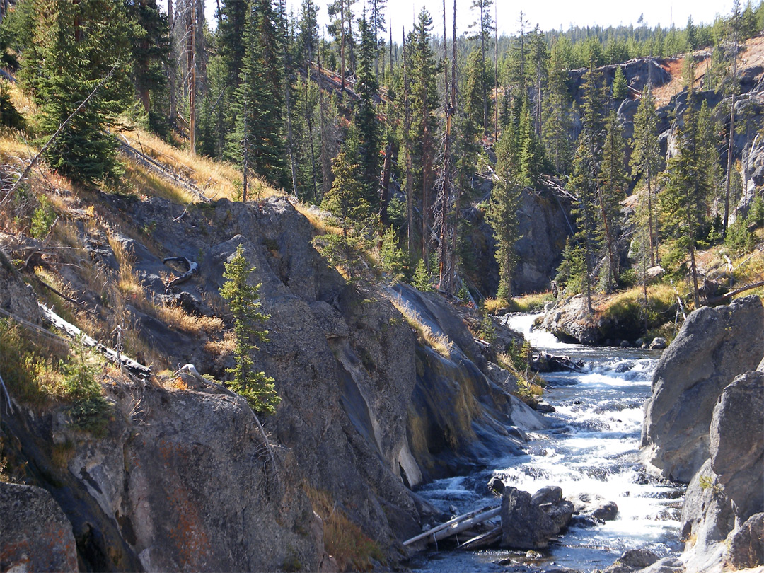 Little Firehole River