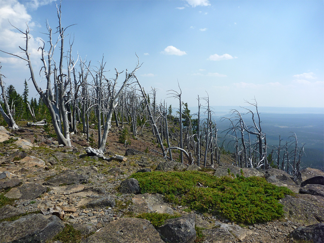 Summit of Observation Peak