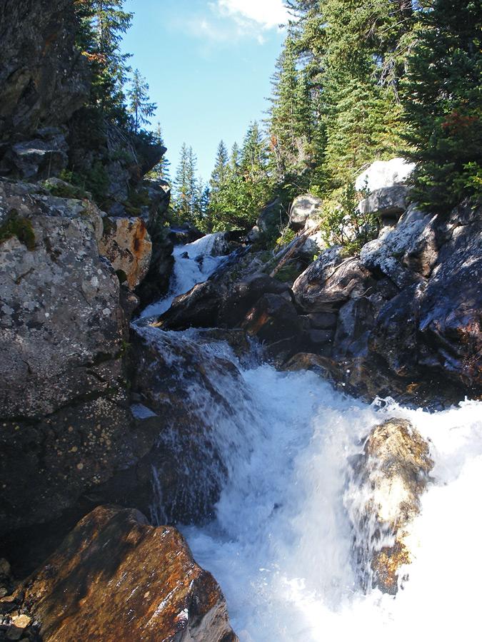 Whitewater cascade: Paintbrush Canyon Trail, Grand Teton