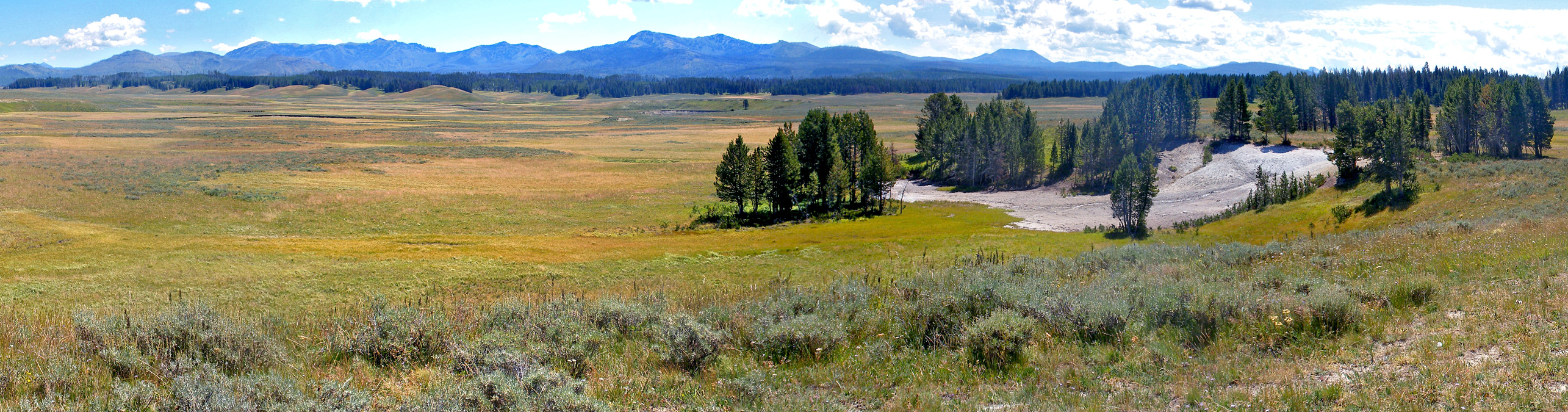 Pelican Valley Pelican Valley Trail Yellowstone National