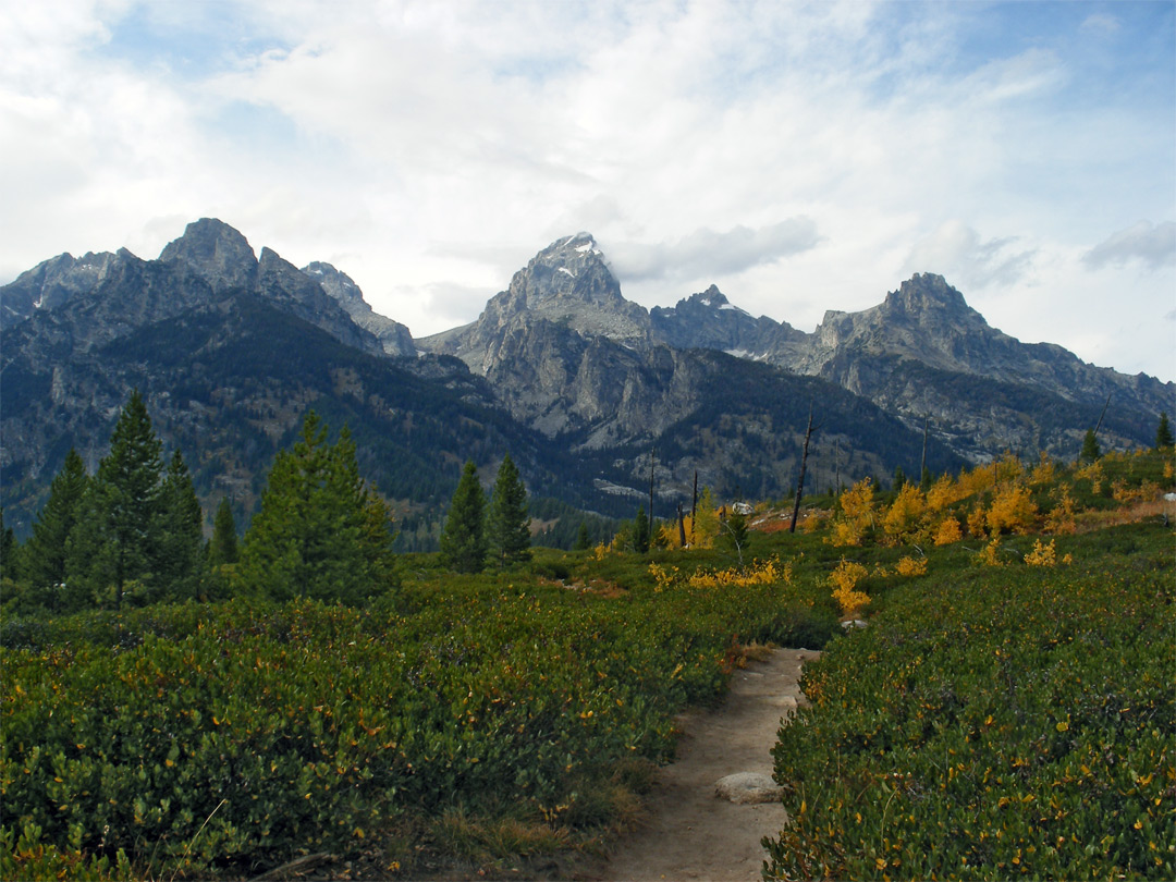 grand teton national park map html with Taggart Trail L on Carduus Nutans1 l moreover Grand Canyon Waterfalls Falls n 5537451 as well 795367 Tetons Wyoming together with Fishing as well Red Paintbrush l.
