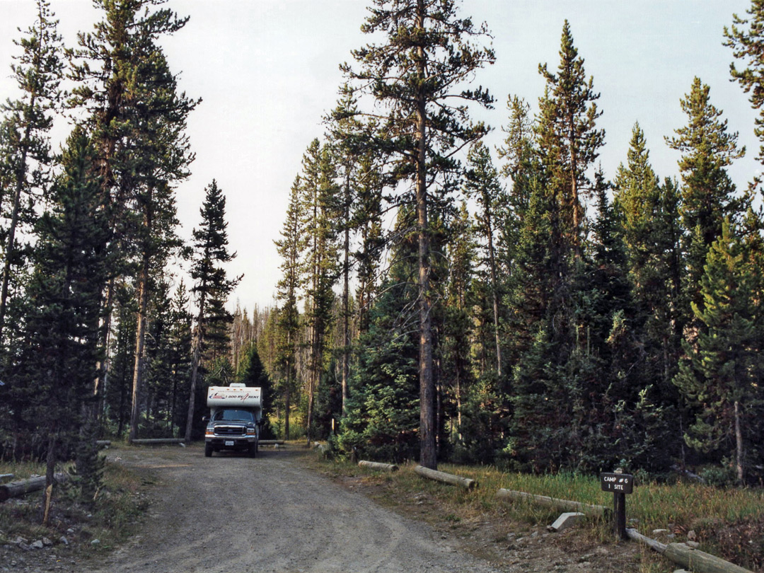 Campsite in the Targhee National Forest