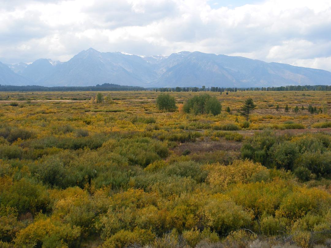 Willow Flats Overlook Grand Teton National Park Wyoming